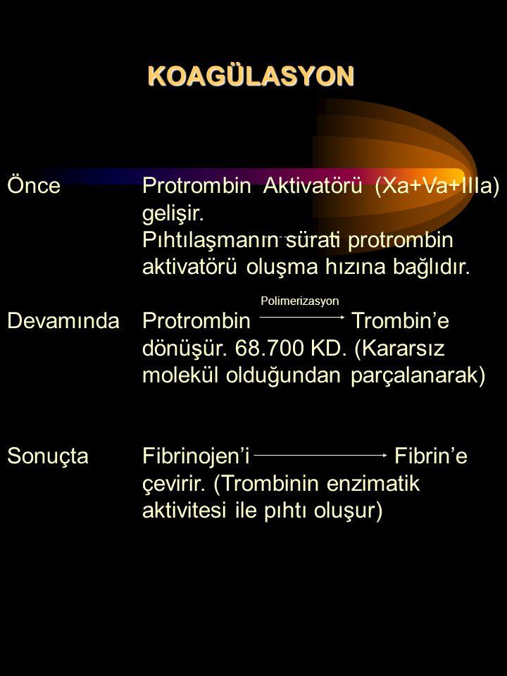 KOAGÜLASYON Önce Protrombin Aktivatörü (Xa+Va+IIIa) gelişir.