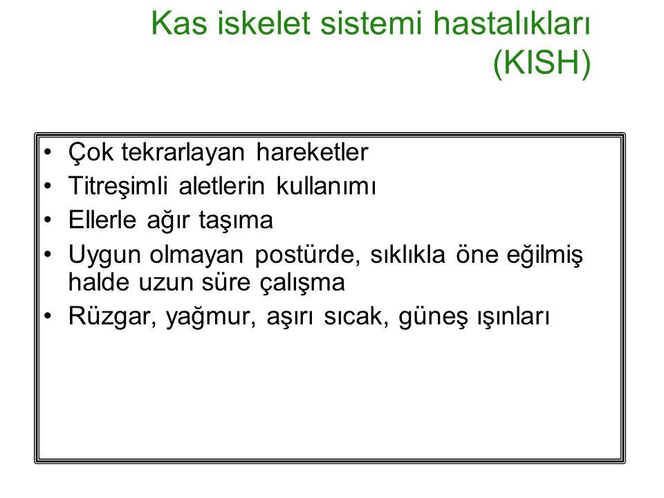 Kas iskelet sistemi hastalıkları (KISH)