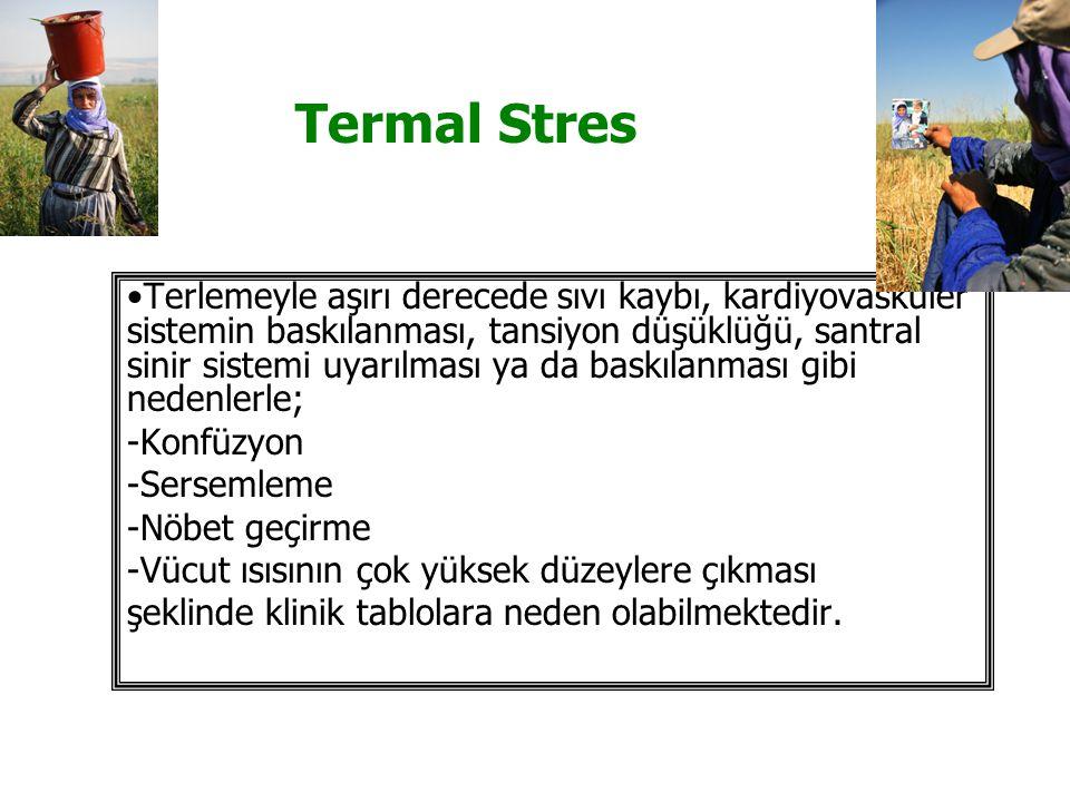 Termal Stres