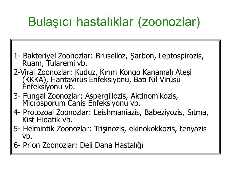 Bulaşıcı hastalıklar (zoonozlar)