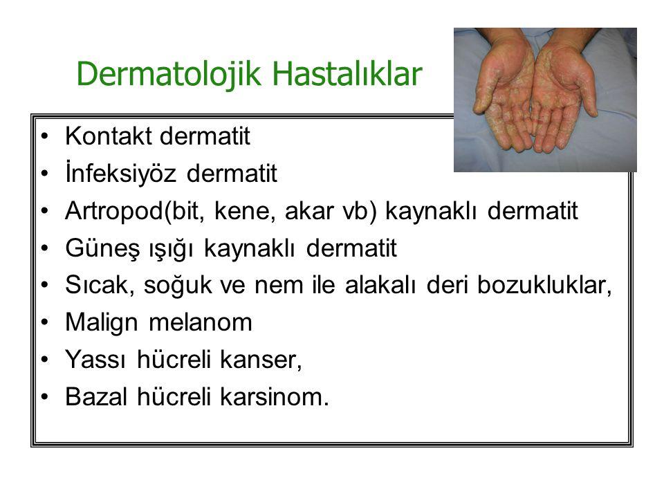 Dermatolojik Hastalıklar