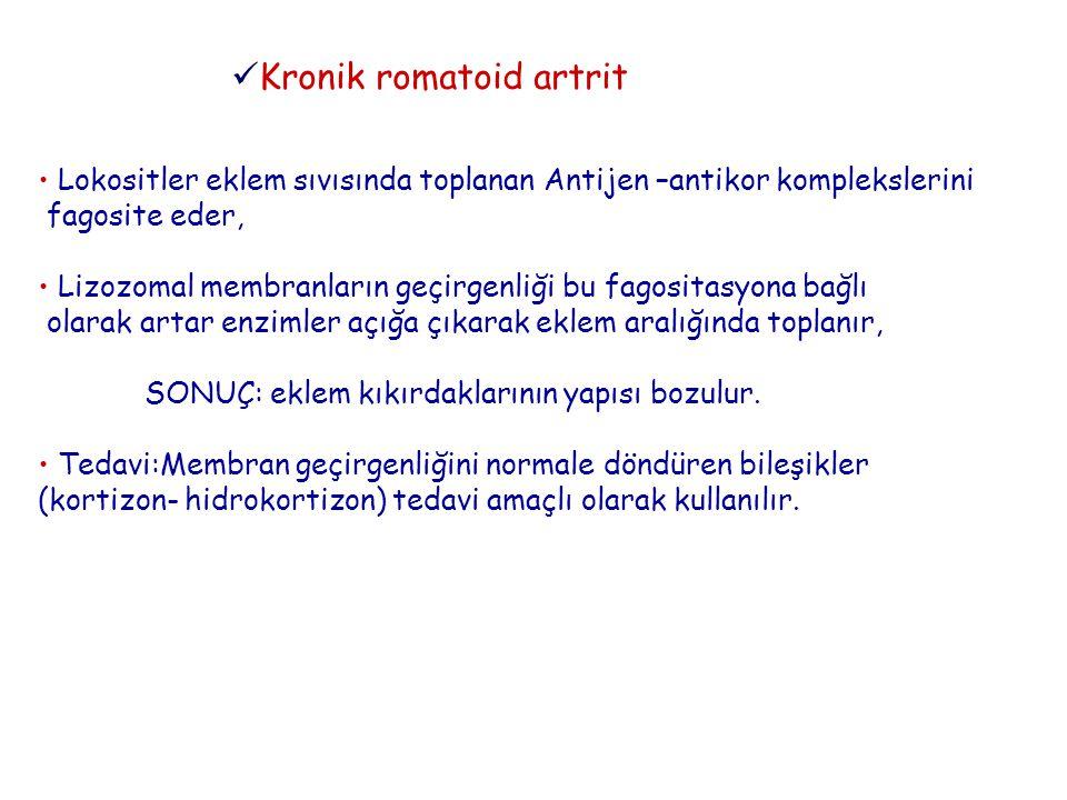Kronik romatoid artrit
