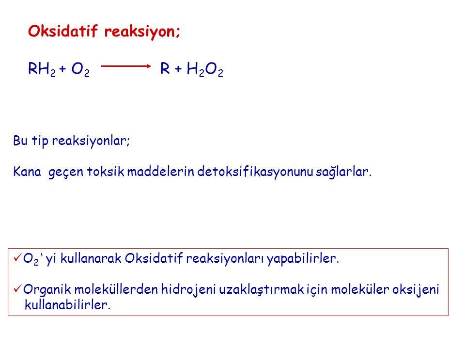 Oksidatif reaksiyon; RH2 + O2 R + H2O2 Bu tip reaksiyonlar;