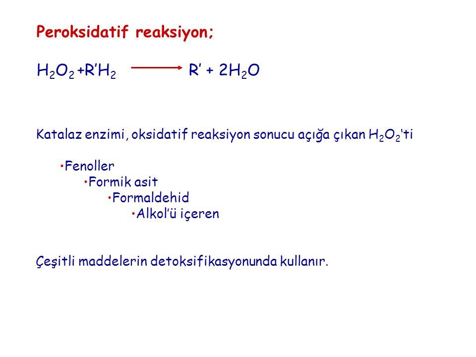 Peroksidatif reaksiyon; H2O2 +R'H2 R' + 2H2O