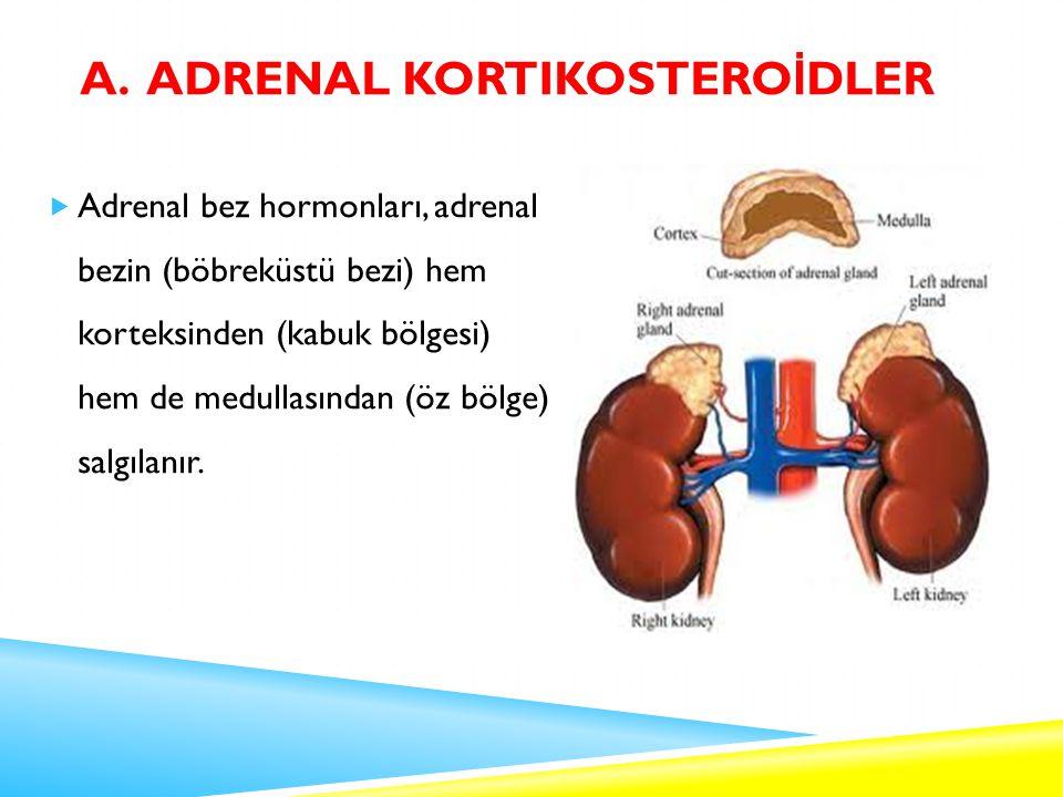 a. Adrenal Kortikosteroİdler