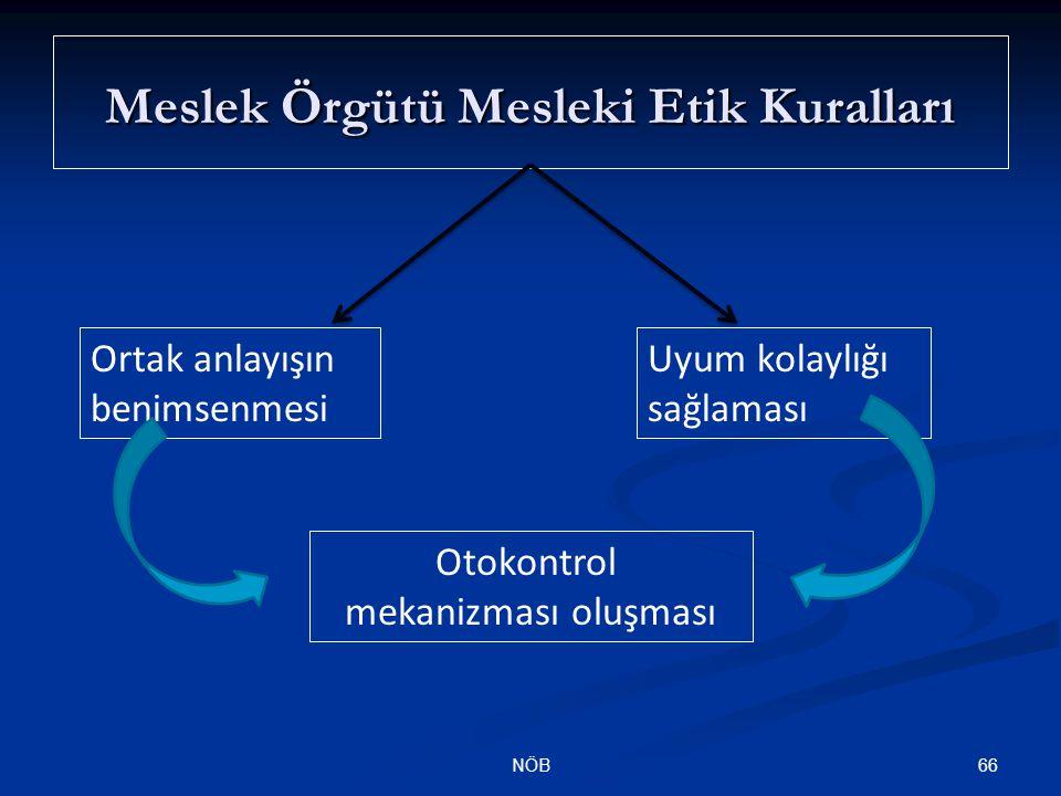Meslek Örgütü Mesleki Etik Kuralları