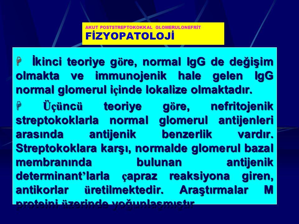 AKUT POSTSTREPTOKOKKAL GLOMERULONEFRİT FİZYOPATOLOJİ