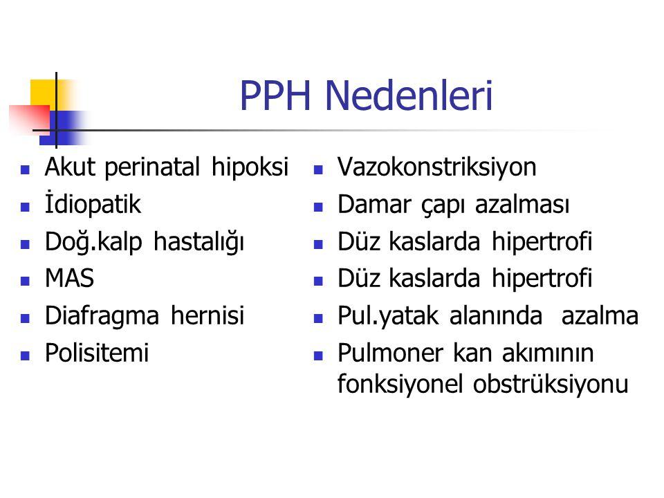 PPH Nedenleri Akut perinatal hipoksi İdiopatik Doğ.kalp hastalığı MAS