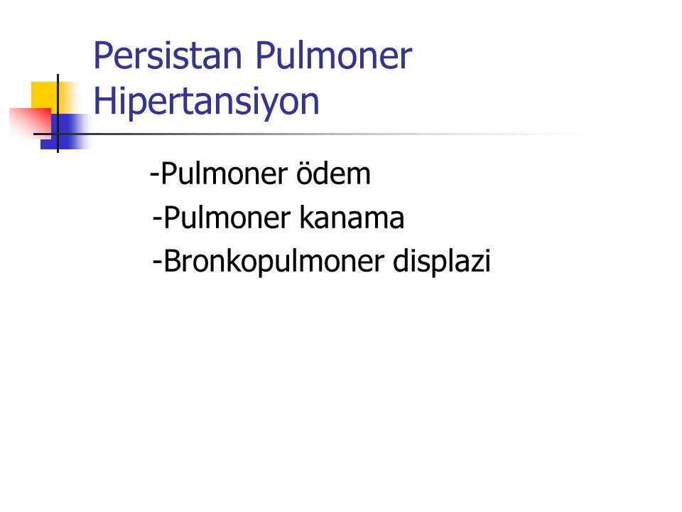 Persistan Pulmoner Hipertansiyon
