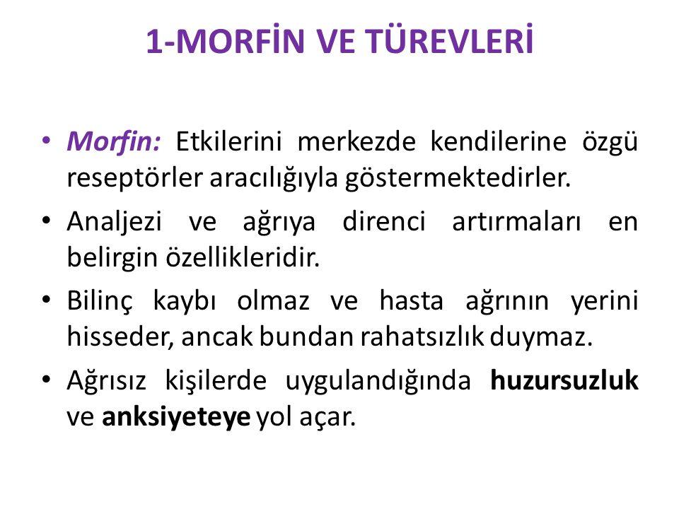 1-MORFİN VE TÜREVLERİ Morfin: Etkilerini merkezde kendilerine özgü reseptörler aracılığıyla göstermektedirler.
