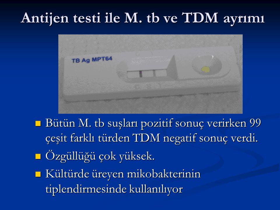 Antijen testi ile M. tb ve TDM ayrımı