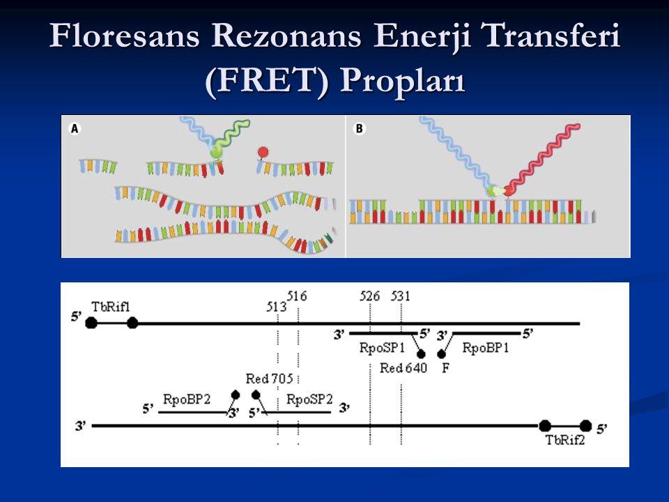 Floresans Rezonans Enerji Transferi (FRET) Propları