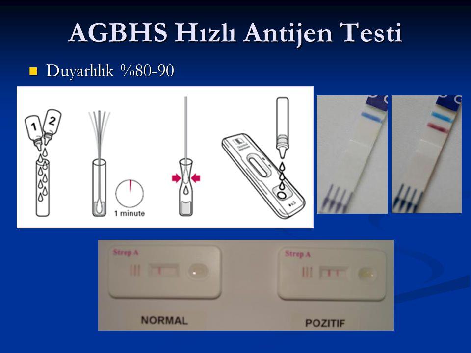 AGBHS Hızlı Antijen Testi