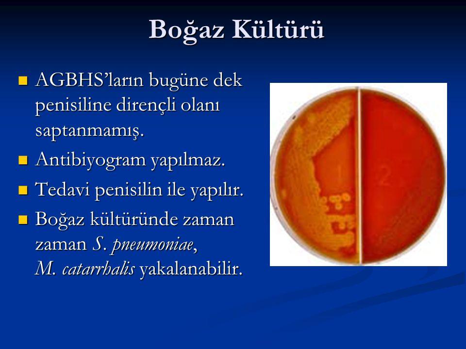 Boğaz Kültürü AGBHS'ların bugüne dek penisiline dirençli olanı saptanmamış. Antibiyogram yapılmaz.