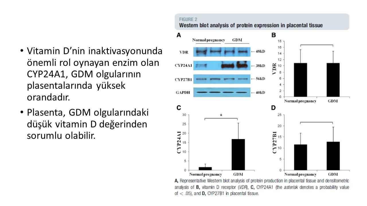 Vitamin D'nin inaktivasyonunda önemli rol oynayan enzim olan CYP24A1, GDM olgularının plasentalarında yüksek orandadır.