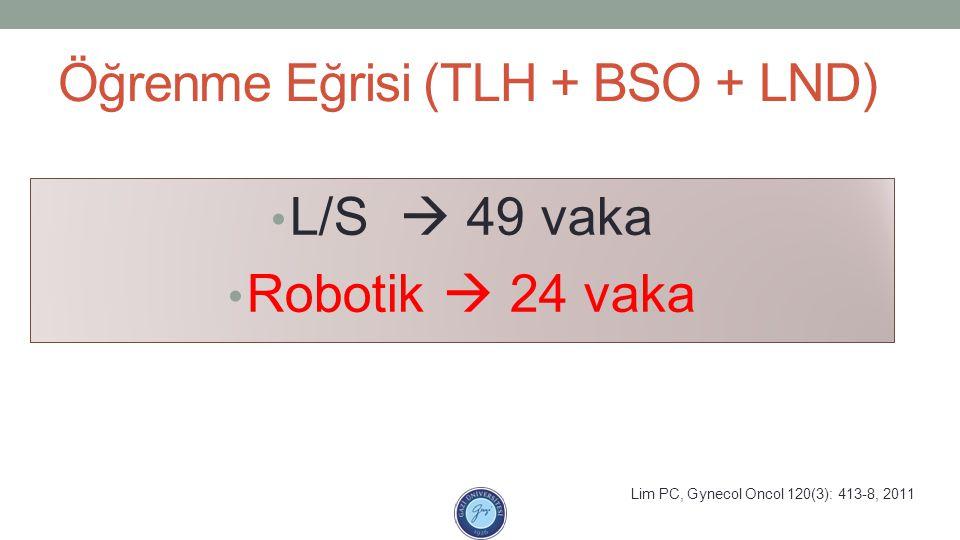 Öğrenme Eğrisi (TLH + BSO + LND)