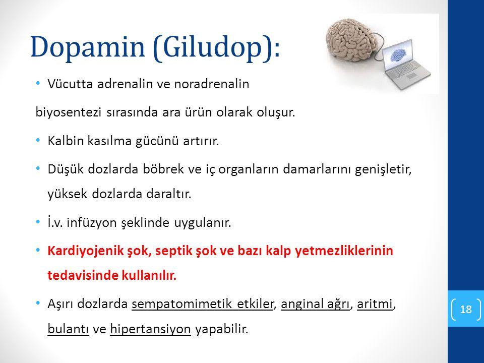 Dopamin (Giludop): Vücutta adrenalin ve noradrenalin
