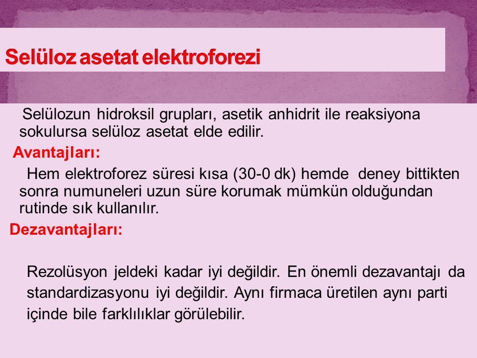 Selüloz asetat elektroforezi