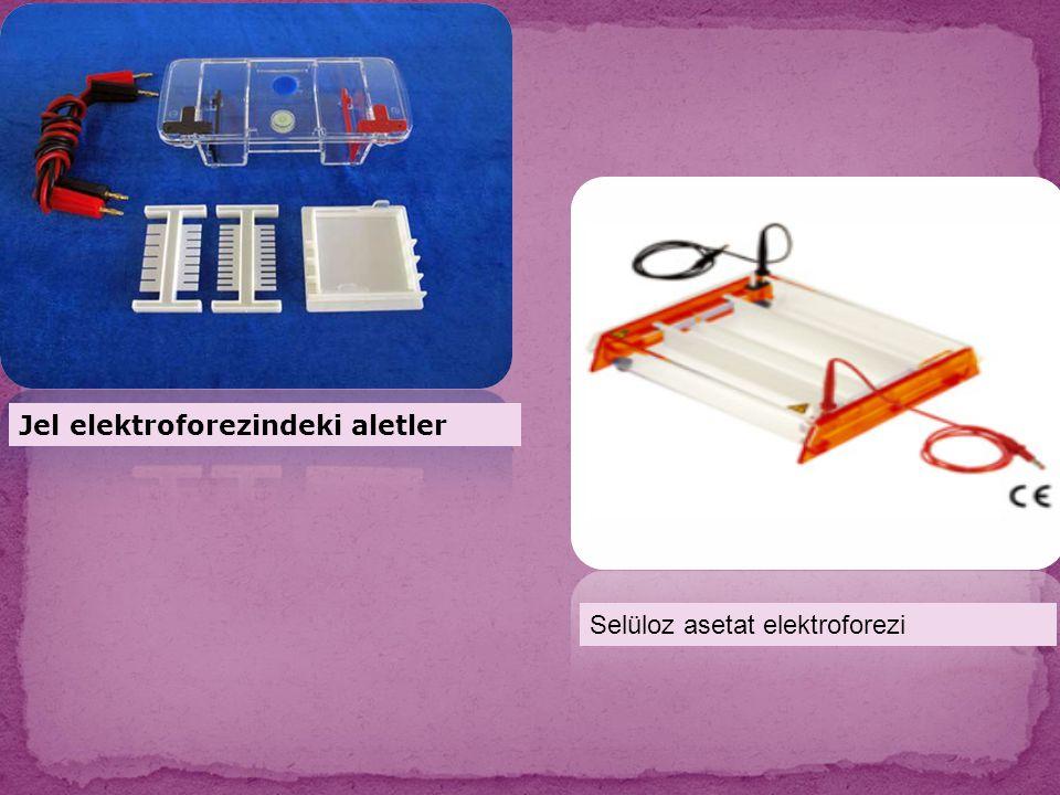 Jel elektroforezindeki aletler
