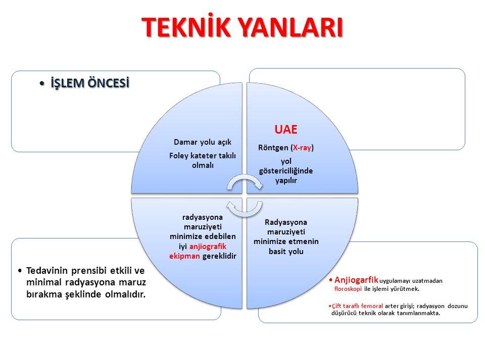 TEKNİK YANLARI İŞLEM ÖNCESİ UAE