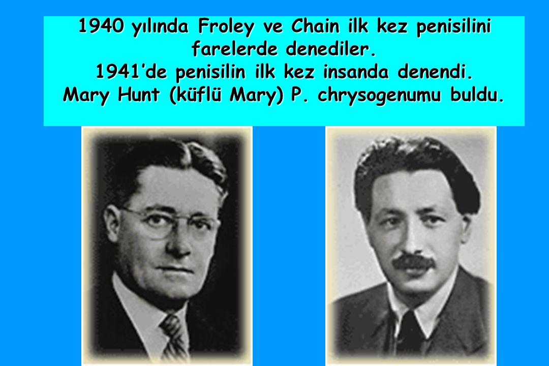 1940 yılında Froley ve Chain ilk kez penisilini farelerde denediler