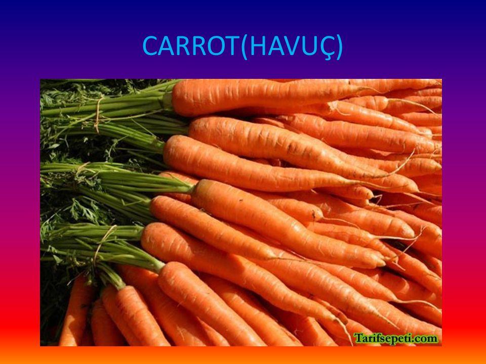 CARROT(HAVUÇ)
