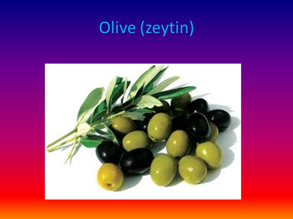 Olive (zeytin)
