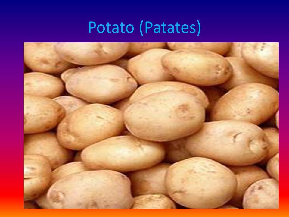 Potato (Patates)