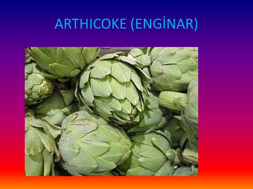 ARTHICOKE (ENGİNAR)