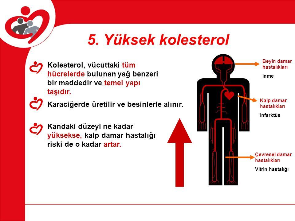 5. Yüksek kolesterol Beyin damar hastalıkları. inme. Kolesterol, vücuttaki tüm hücrelerde bulunan yağ benzeri bir maddedir ve temel yapı taşıdır.