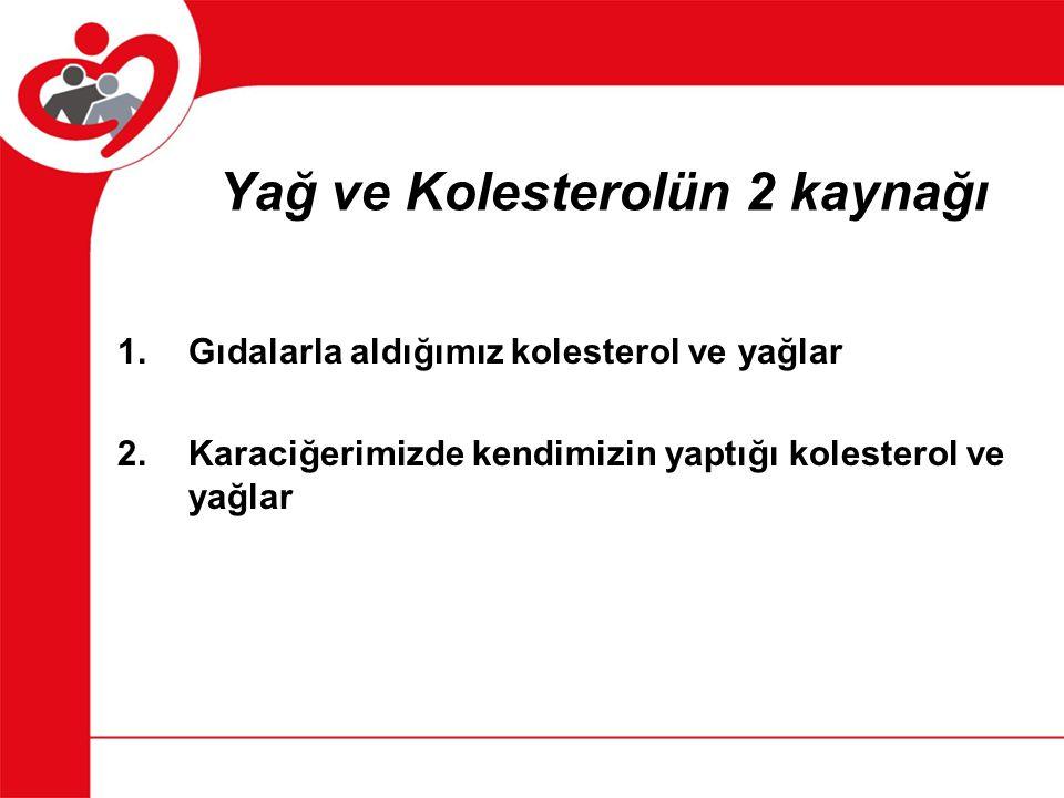 Yağ ve Kolesterolün 2 kaynağı
