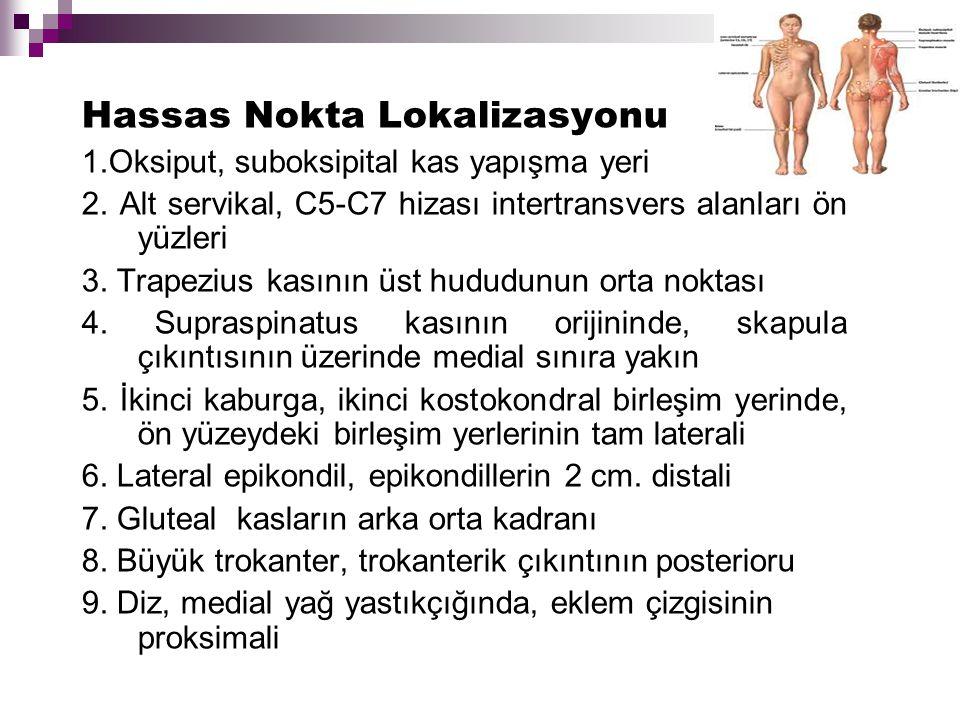 Hassas Nokta Lokalizasyonu