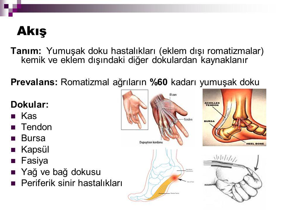 Akış Tanım: Yumuşak doku hastalıkları (eklem dışı romatizmalar) kemik ve eklem dışındaki diğer dokulardan kaynaklanır.
