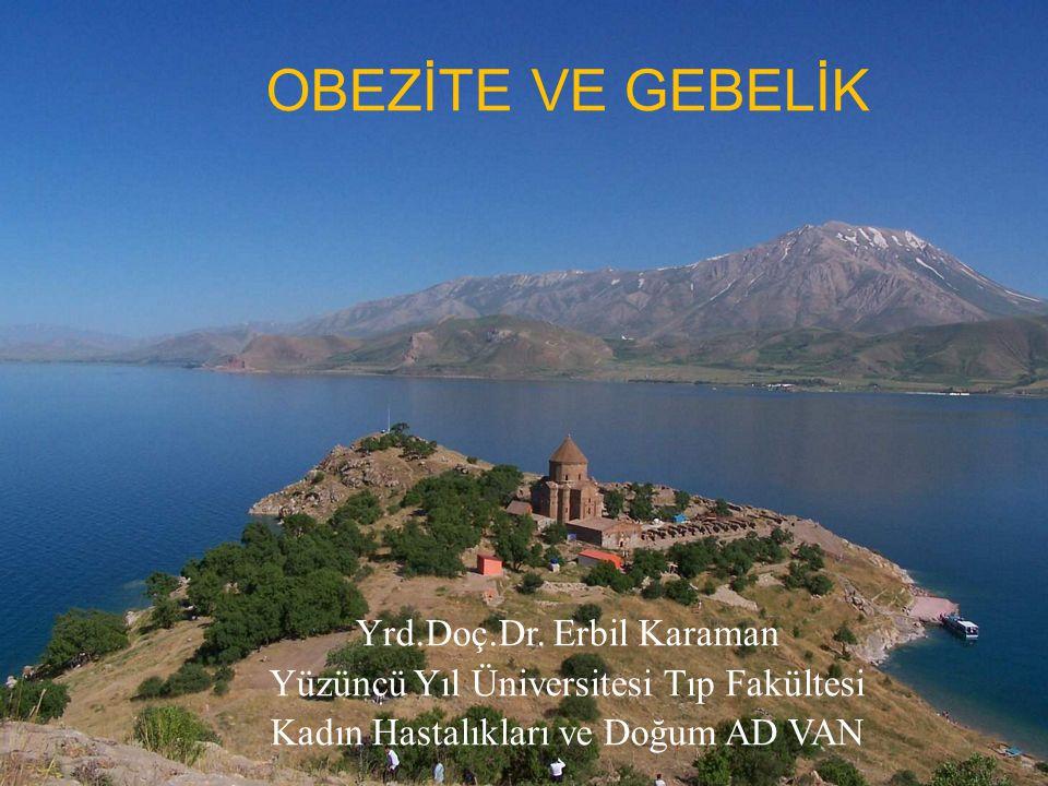 OBEZİTE VE GEBELİK Yrd.Doç.Dr. Erbil Karaman