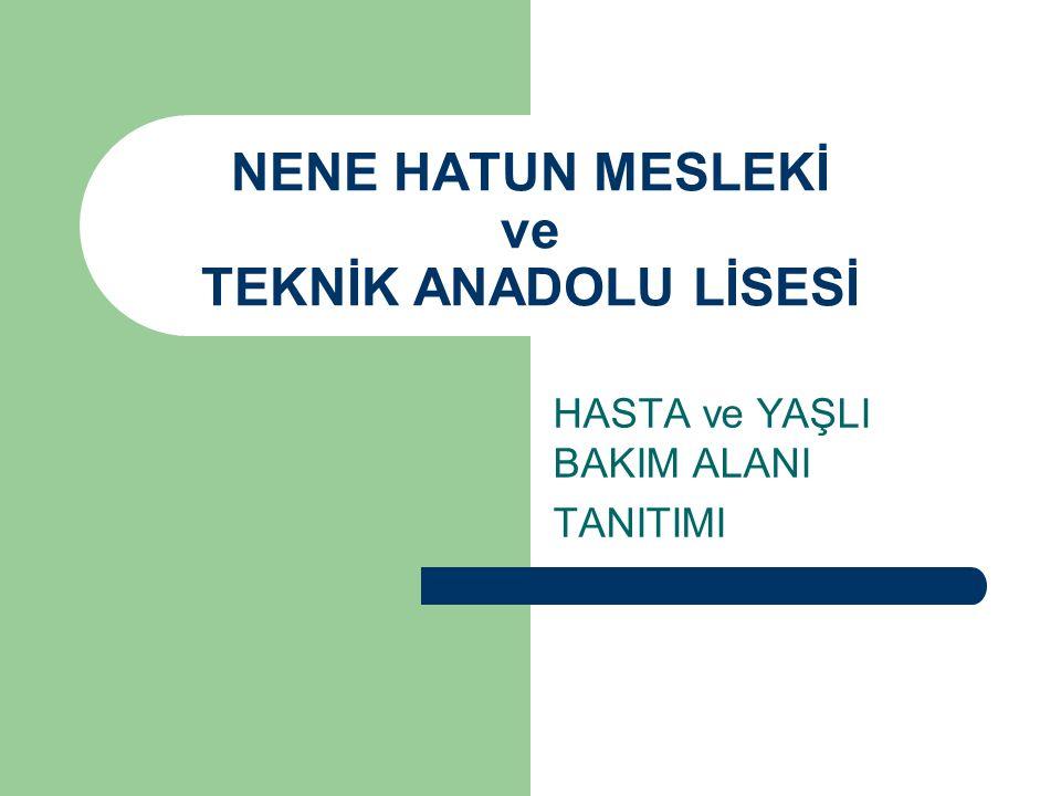 NENE HATUN MESLEKİ ve TEKNİK ANADOLU LİSESİ