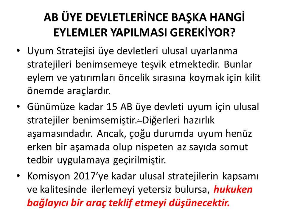 AB ÜYE DEVLETLERİNCE BAŞKA HANGİ EYLEMLER YAPILMASI GEREKİYOR