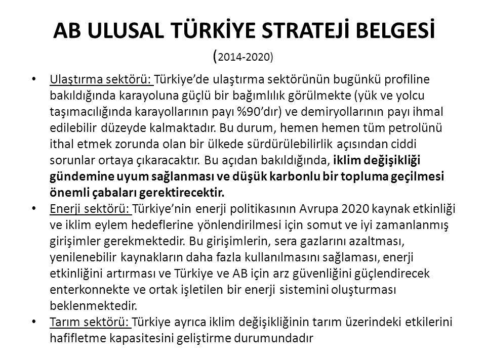 AB ULUSAL TÜRKİYE STRATEJİ BELGESİ (2014-2020)