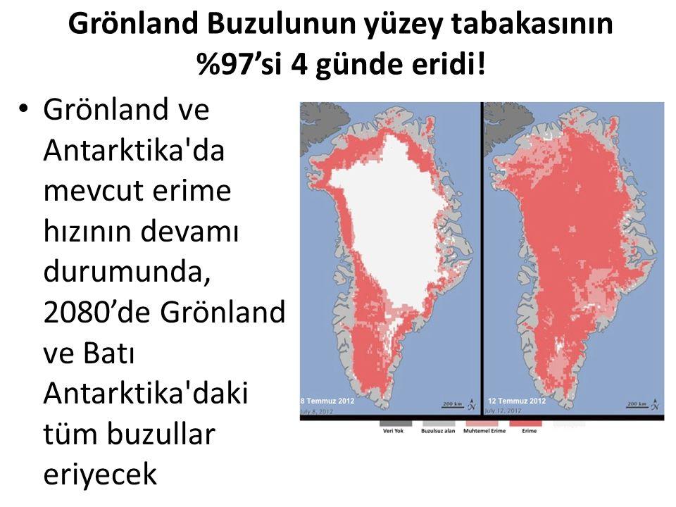 Grönland Buzulunun yüzey tabakasının %97'si 4 günde eridi!