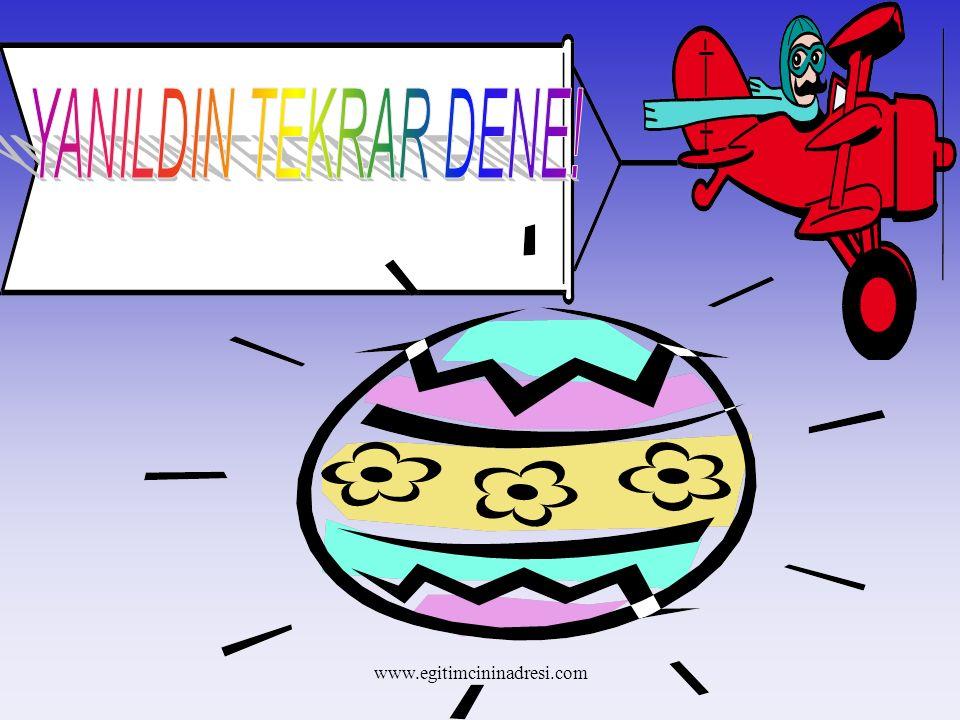 YANILDIN TEKRAR DENE! www.egitimcininadresi.com