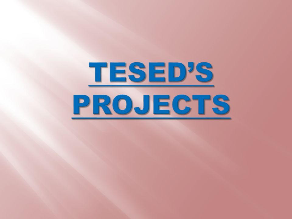 TESED'S PROJECTS
