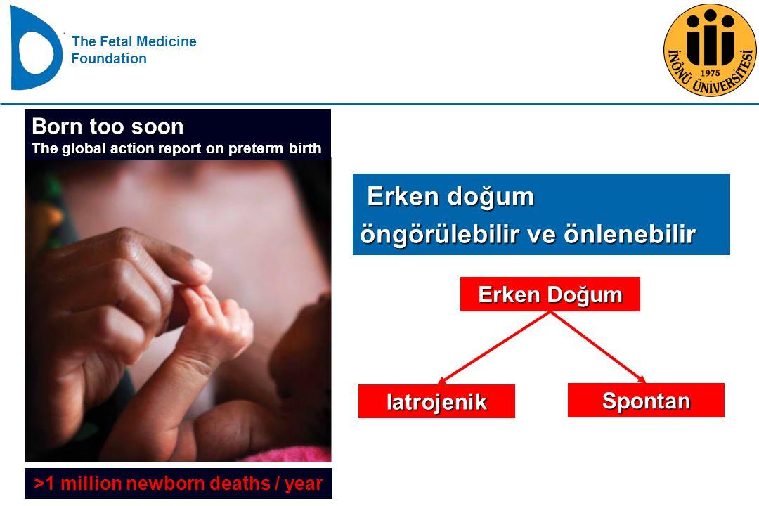 >1 million newborn deaths / year