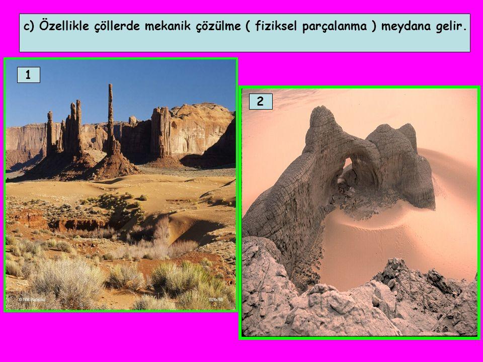 c) Özellikle çöllerde mekanik çözülme ( fiziksel parçalanma ) meydana gelir.