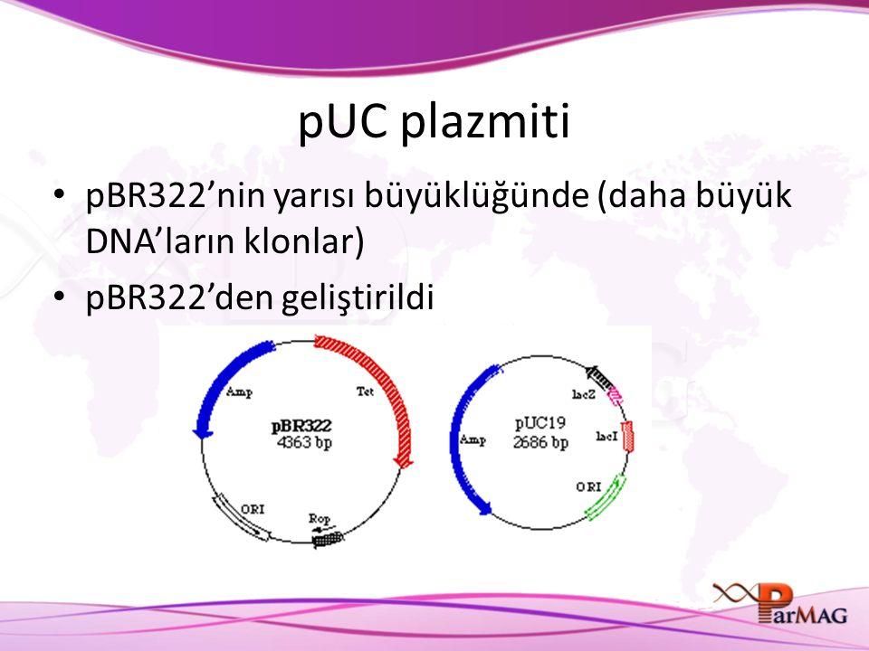 pUC plazmiti pBR322'nin yarısı büyüklüğünde (daha büyük DNA'ların klonlar) pBR322'den geliştirildi.