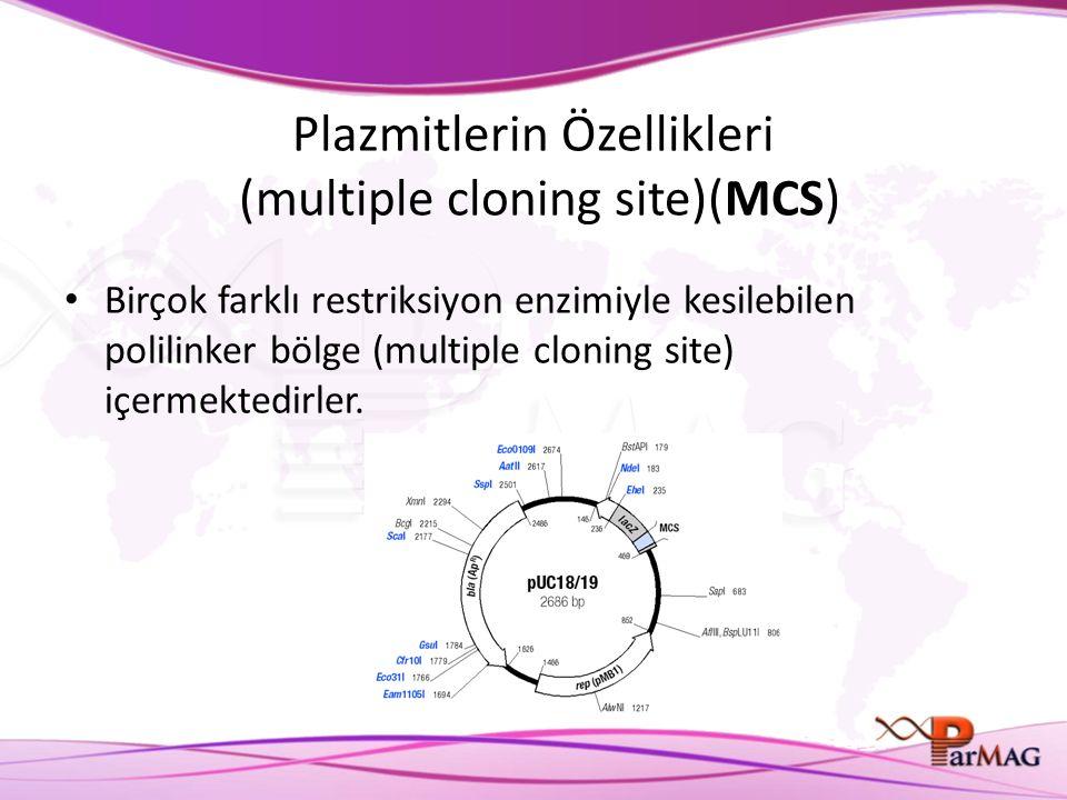 Plazmitlerin Özellikleri (multiple cloning site)(MCS)