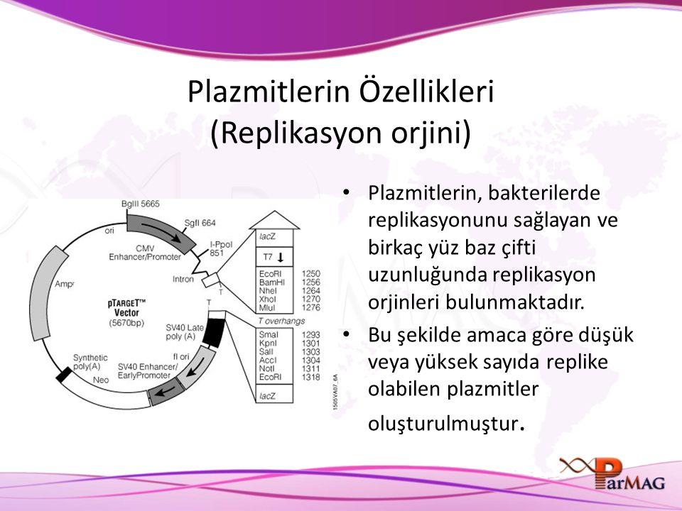 Plazmitlerin Özellikleri (Replikasyon orjini)