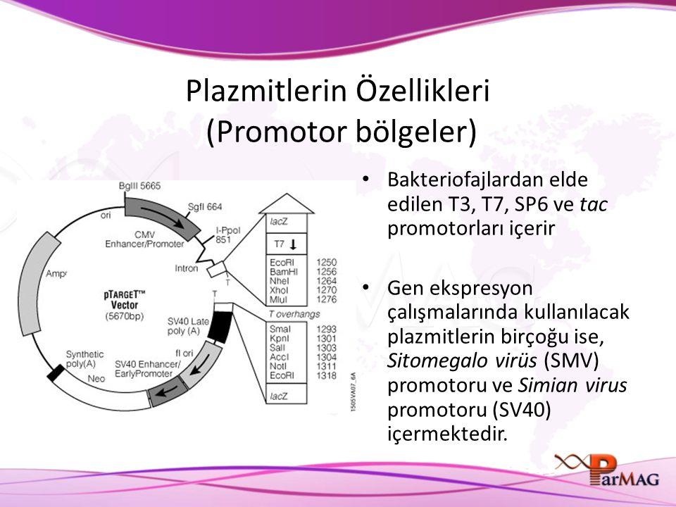 Plazmitlerin Özellikleri (Promotor bölgeler)