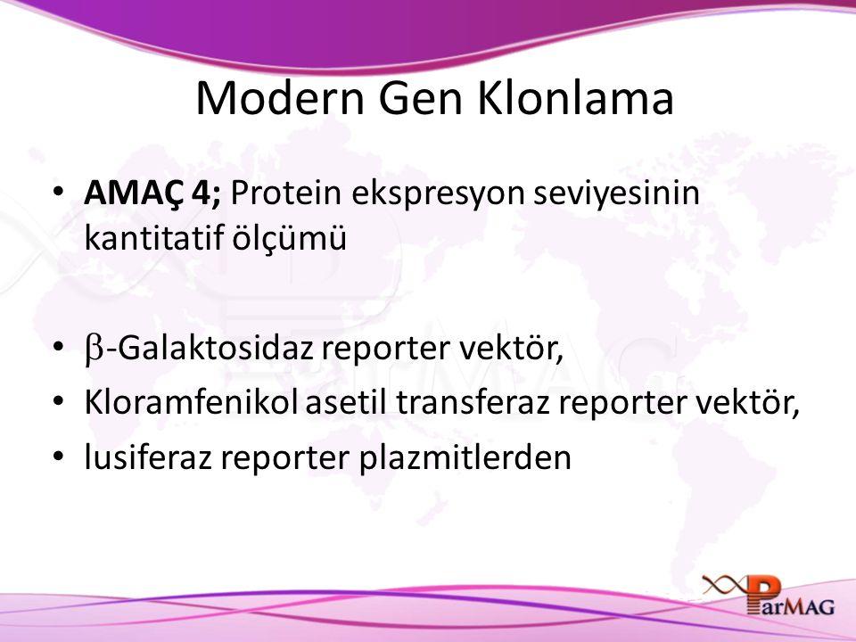 Modern Gen Klonlama AMAÇ 4; Protein ekspresyon seviyesinin kantitatif ölçümü. -Galaktosidaz reporter vektör,