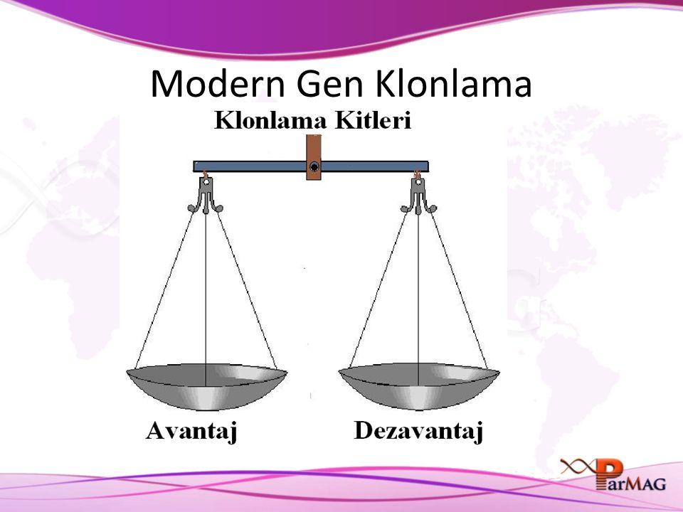 Modern Gen Klonlama