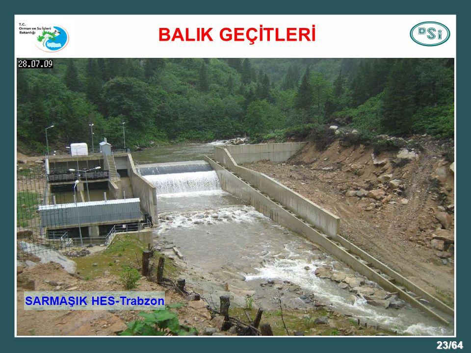 BALIK GEÇİTLERİ SARMAŞIK HES-Trabzon