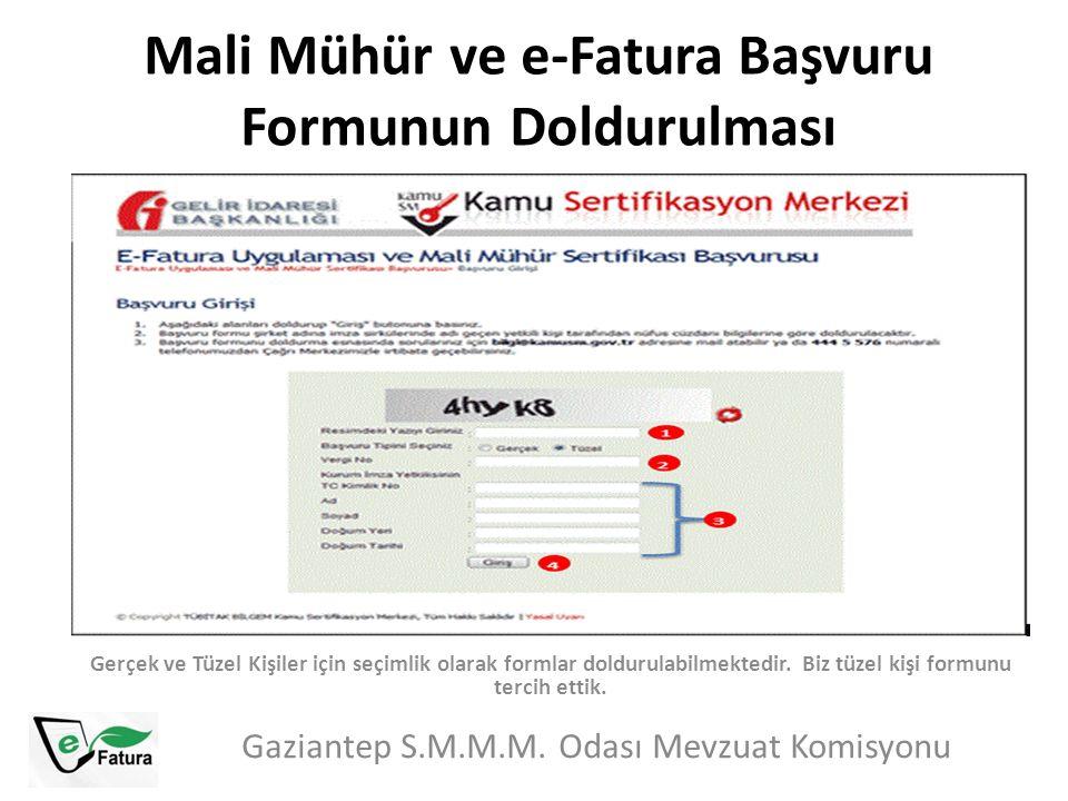 Mali Mühür ve e-Fatura Başvuru Formunun Doldurulması